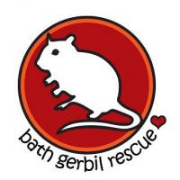 Bath Gerbil Rescue