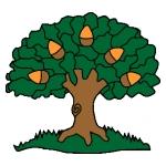Oakwood Association (PTA for Oakwood Primary School)