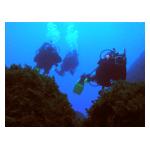 Dunfermline Sub-Aqua Club