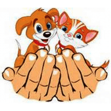 Animal Care, Morecambe and Lancaster District