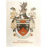 Wednesfield Town Ladies Football Club