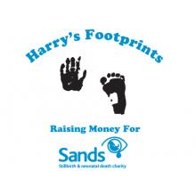 Harry's Footprints