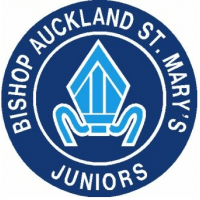 Bishop Auckland St Mary's Junior Football Club