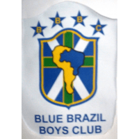 Blue Brazil 95's