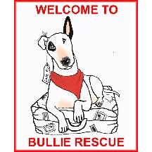 Bullie Rescue