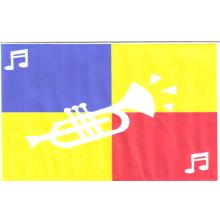 Grafton District Scout Band