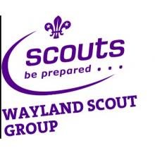 Wayland Scout Group