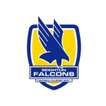 Beighton Falcons Football Club