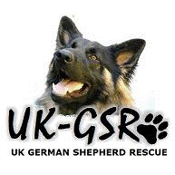 UK German Shepherd Dog Rescue Angels