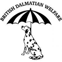 British Dalmatian Welfare
