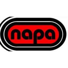 Northern Academy of Performing Arts NAPA