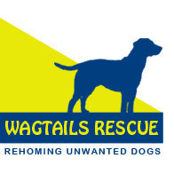 Wagtails Rescue Essex