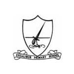 Excalibur Primary  - Stoke-on-Trent, Alsager