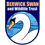 Berwick Swan and Wildlife Trust