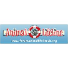 Animal Lifeline UK