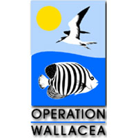 Operation Wallacea Indonesia Expedition - Nicole Gill