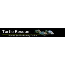 Turtle Rescue Centre