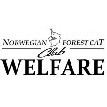 Norwegian Forest Cat Club Welfare