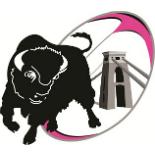 Bristol Bisons RFC