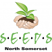 Survivors Empowering And Educating Domestic Abuse Services - SEEDS North Somerset