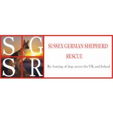 Sussex German Shepherd Rescue