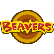 1st Langley Green Scout Group - Beaver Colony