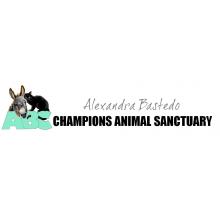 ABC Animal Sanctuary - West Chiltington