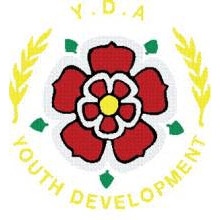 The Youth Development Association