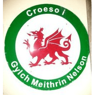 Cylch Meithrin Nelson