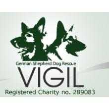Vigil German Shepherd Dog Rescue