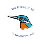 Teifi Ringing Group