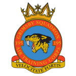 195 Grimsby SQN ATC cause logo