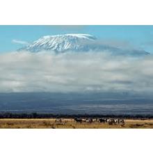 Childreach International Kilimanjaro 2012 - Adam Wilkinson
