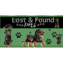 Lost And Found Pets - Londonderry