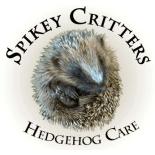 Spikey Critters Hedgehog Care