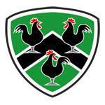 Gwernyfed RFC