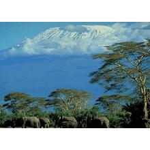 ChildReach International 2012 Mount Kilimanjaro - Dan Green