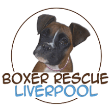 Joey's Legacy Boxer Rescue Liverpool