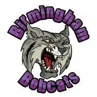 Birmingham Bobcats Softball Club