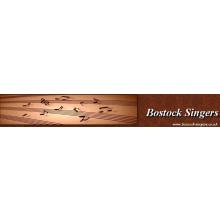 Bostock Singers
