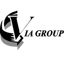 VIA Group (Views Into Action)
