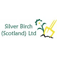 Silver Birch Scotland Ltd