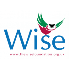 The Wise Foundation