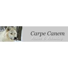 Carpe Canem Rescue & Rehoming