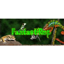FantastiRep - Reptile & Exotics Rescue & Sanctuary