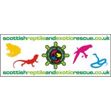 Scottish Reptile & Exotic Rescue