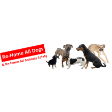 Re-Home All Dogs