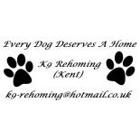 K9 Rehoming (Kent)