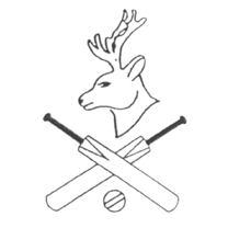 Dyrham & Hinton Cricket Club cause logo