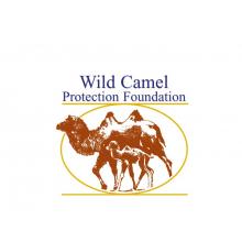 Wild Camel Protection Foundation (WCPF)